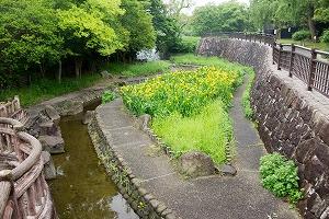 仁徳天皇陵古墳の堀の水
